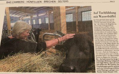 Auf Tuchfühlung mit Wasserbüffel